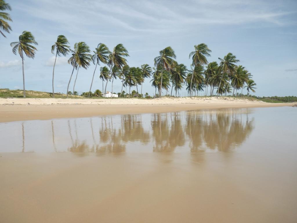 BRASIL . RIO GRANDE DO NORTE . Parrachos de Maracajau. Atenção Para Não Dar Com os Burros N'Água!