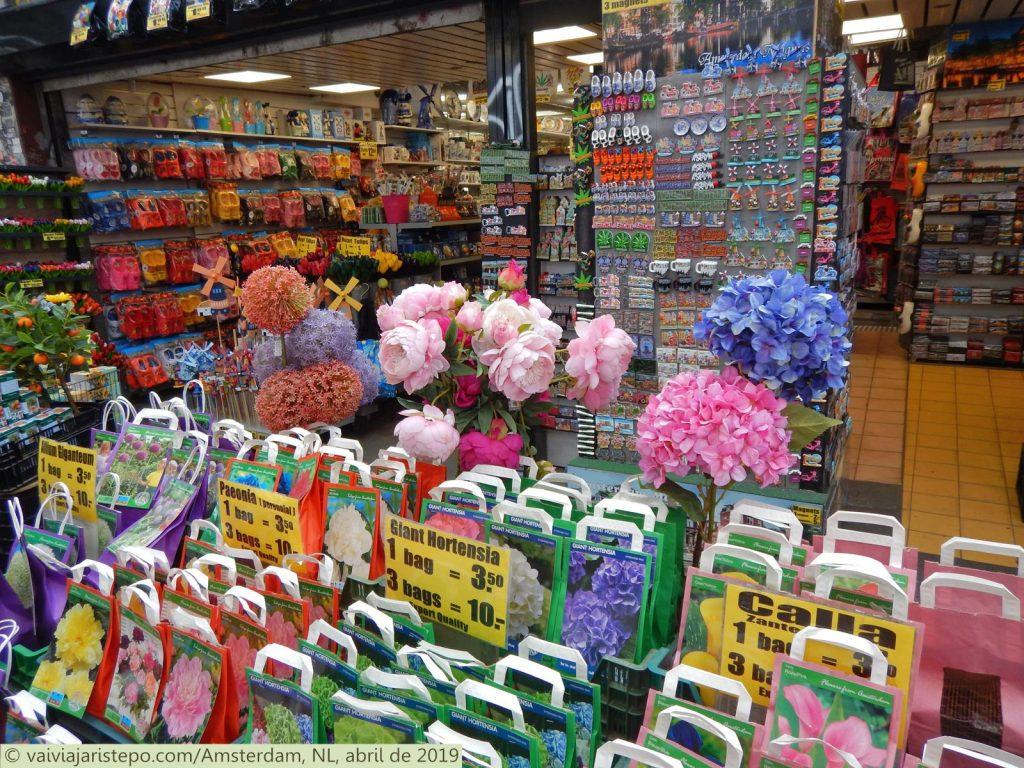 HOLANDA . AMSTERDAM . BLOEMENMARKT – O Mercado Flutuante de Flores . Onde Comprar Lembranças da Holanda.