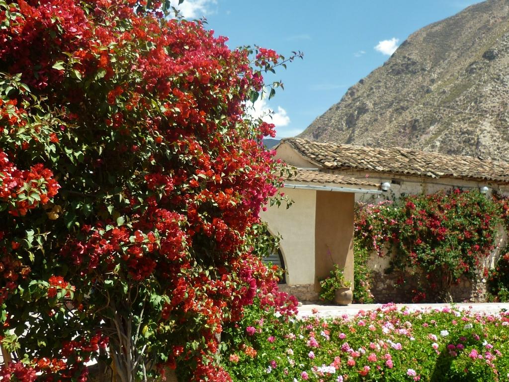 PERU . YUCAY . Hotel Sonesta Posada del Inca. Atenção Às Reclamações De Quem Já Se Hospedou No Hotel. Vide Final Desta Postagem.